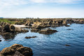 The rocks in the coast of fort bragg california a view Royalty Free Stock Image