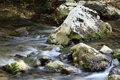 Rocks and creek water spring season Royalty Free Stock Images