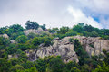 Rocks and green trees Royalty Free Stock Photo