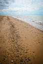 Rocks on lake michigan beach littering a Stock Images