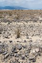 Rocks, sand and sagebrush with the Panamint Mountains in background of Death Valley National Park Royalty Free Stock Photo