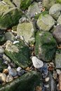Rocks stones pebbles and random shapes sizes and colors lying on a riverbank Stock Image