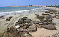 Rocky beach ayia napa cyprus Royalty Free Stock Photography