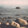 Rocky beach in the baltic sea vintage with plants and skyline photography effect Royalty Free Stock Photo