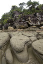 Rocky beach borneo in the bako national park malaysia Stock Images