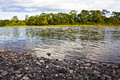 Rocky beach on the Napo River Royalty Free Stock Photo