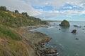 Rocky coast in Humboldy County Royalty Free Stock Photo