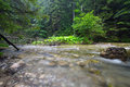 Rocky creek in tatra mountains poland Stock Photography