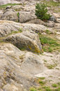 Rocky landscape in the harz germany Royalty Free Stock Images