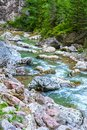 Rocky mountain river in summer Royalty Free Stock Photo