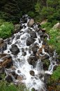 Rocky Mountain Stream 33 Royalty Free Stock Photo
