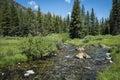 Rocky mountain stream clair Images libres de droits