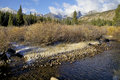 Rocky Mountain Stream in Fall Royalty Free Stock Images
