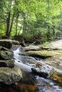 Rocky Mountain stream Royalty Free Stock Photo