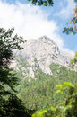 Rocky ridge in bucegi mountains from the carpathians Royalty Free Stock Images