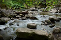 Rocky river in jungle Stock Photos