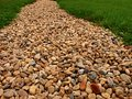 Rocky road to nowhere lined with grasses and stones Stock Photos