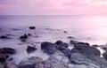 Rocky saint martins island of bangladesh at sunset Stock Image