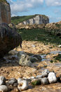Rocky shoreline Stock Photo