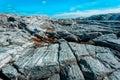 Rocky stone landscape Royalty Free Stock Photo