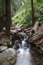 Rocky Stream Royalty Free Stock Photography