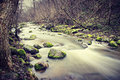 Rocky stream a in a forest long exposure Stock Photography
