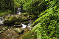 Rocky stream mountain in a costa rica rainforest Stock Photography