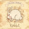 Rocznik karta z chińskim zodiakiem �rabbit Obrazy Stock