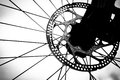 Roda de bicicleta (close-up) Imagem de Stock Royalty Free