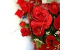 Rode geïsoleerdes rozen Stock Afbeeldingen