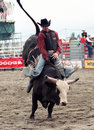 Rodeo Royalty Free Stock Photos