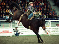 Rodeo Royalty Free Stock Photo