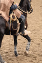 Rodeo in chile Stock Photography