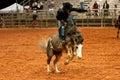Rodeo Cowboy Royalty Free Stock Photo