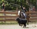 Rodeo fotografia Zdjęcie Royalty Free