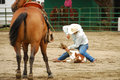 Rodeo south calf roping at the myrtle creek douglas in early june Stock Photos