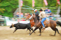 Rodeo south team roping at the myrtle creek douglas in early june Stock Photo