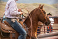 Rodeo wrangler horse and rider prepare for the calf roping event at a montana Royalty Free Stock Images