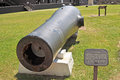 Rodman Cannon Royalty Free Stock Photo