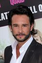 Rodrigo Santoro at the  Royalty Free Stock Photos