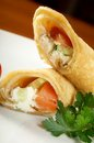 Rolled pancakes stuffed chicken Stock Photography