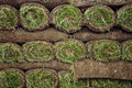 Rolled sod Stock Photo