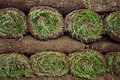 Rolled sod Royalty Free Stock Image