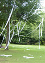 Rolled tree rolling or tp ing a house or is often done as a joke or prank not necessarily a crime Royalty Free Stock Photos
