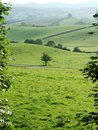 Rolling farmland near Kendal Royalty Free Stock Photos