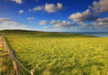 Rolling green hills landscape under the blue sky with cumulus cloud in katiki point south island new zealand Stock Image