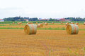 Rolling haystacks in the yellow agriculture field Royalty Free Stock Photo
