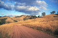 Rolling hills near tamworth australia in the late afternoon sun on a lonely gravel road Royalty Free Stock Image