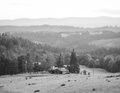 Rolling Hills In The Oregon Fa...