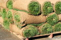 Rolls Of Sod Royalty Free Stock Photos